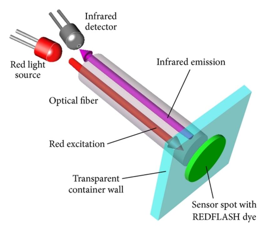 分光光度计的检测器